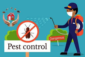 Complete pest control services at lowest price in Mississauga, Toronto & Milton