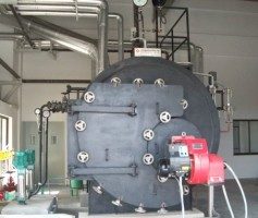 Thermodyne Engineering Systems - Manufacturer and Supplier of Steam Boilers in India