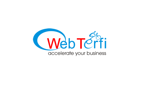 Webterfi Digital Marketing Agency Delhi