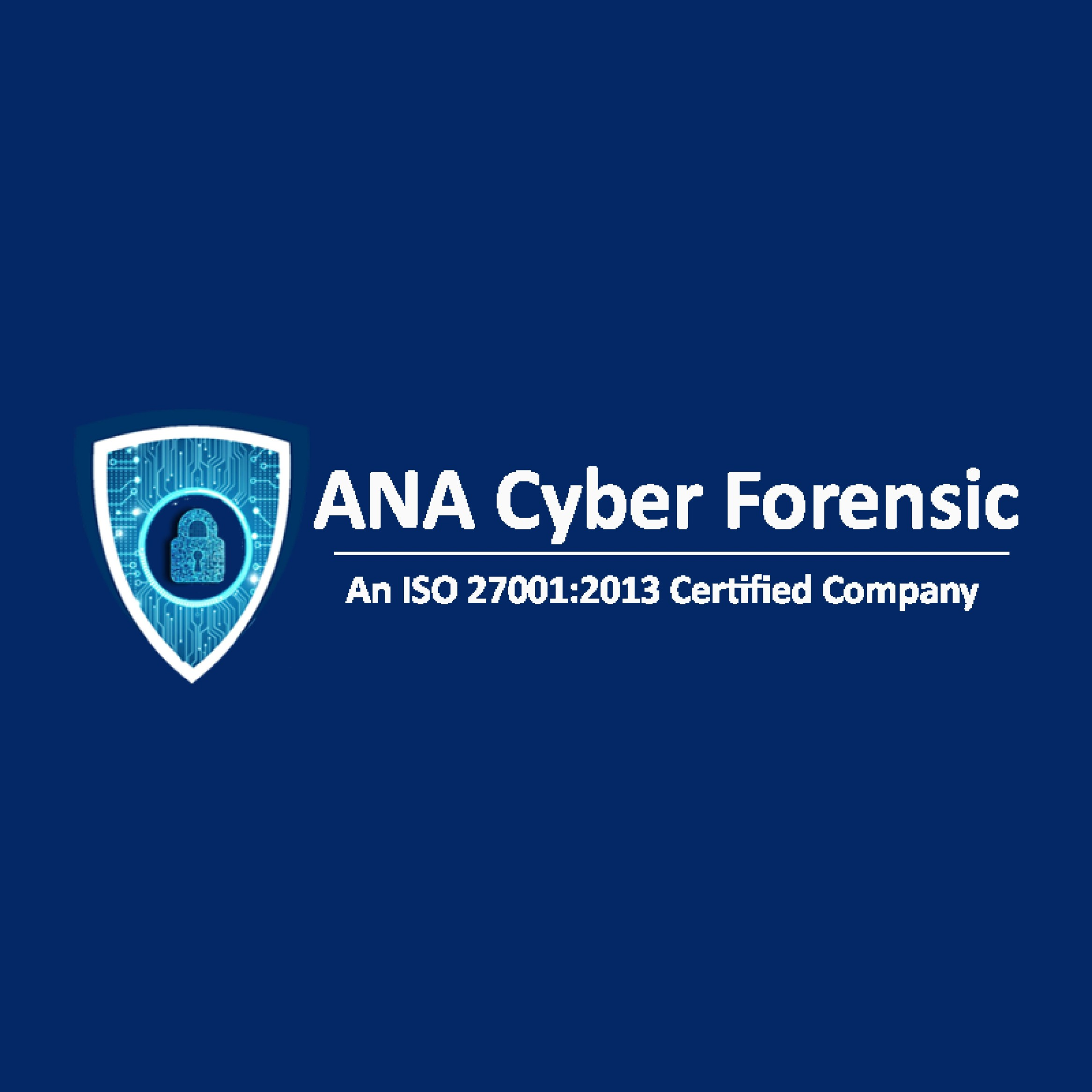 cyber security company in india