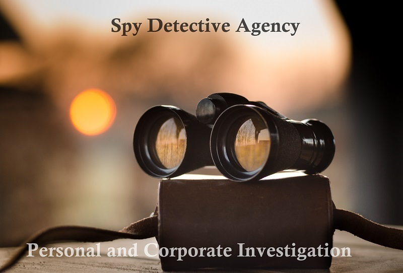 Spy Detective Agency | Detective Services in Delhi