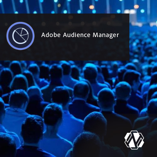 Adobe Audience Manager DMP| AAM Partner & Consultant
