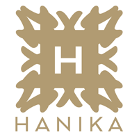 Hanika Bag Pillow in Singapore | Luxury Bags Shaper & Organizer
