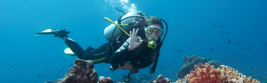 Scuba DivIng Courses In India