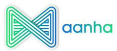 Aanha services digital marketing services